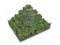 Pyramida na jahody, plast