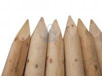 Kůl dřevěný